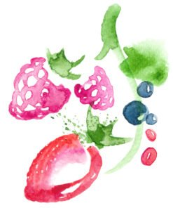 Share a berry illustration