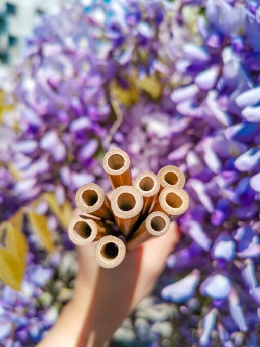 Sugrör uppfrån över lila blommor